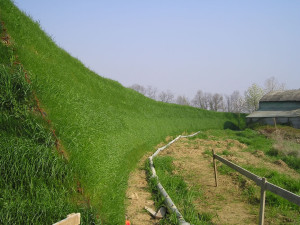 green retaining walls